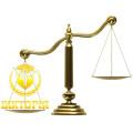 Судовий супровід
